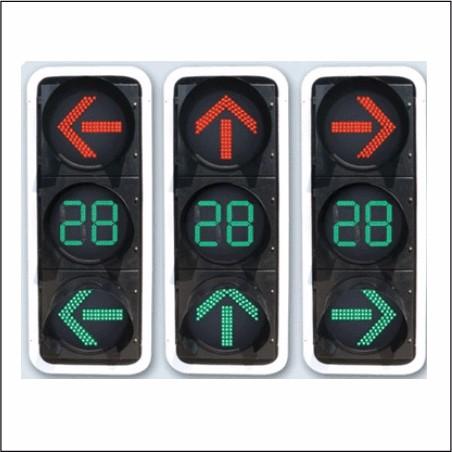 300箭头方向交通信号灯
