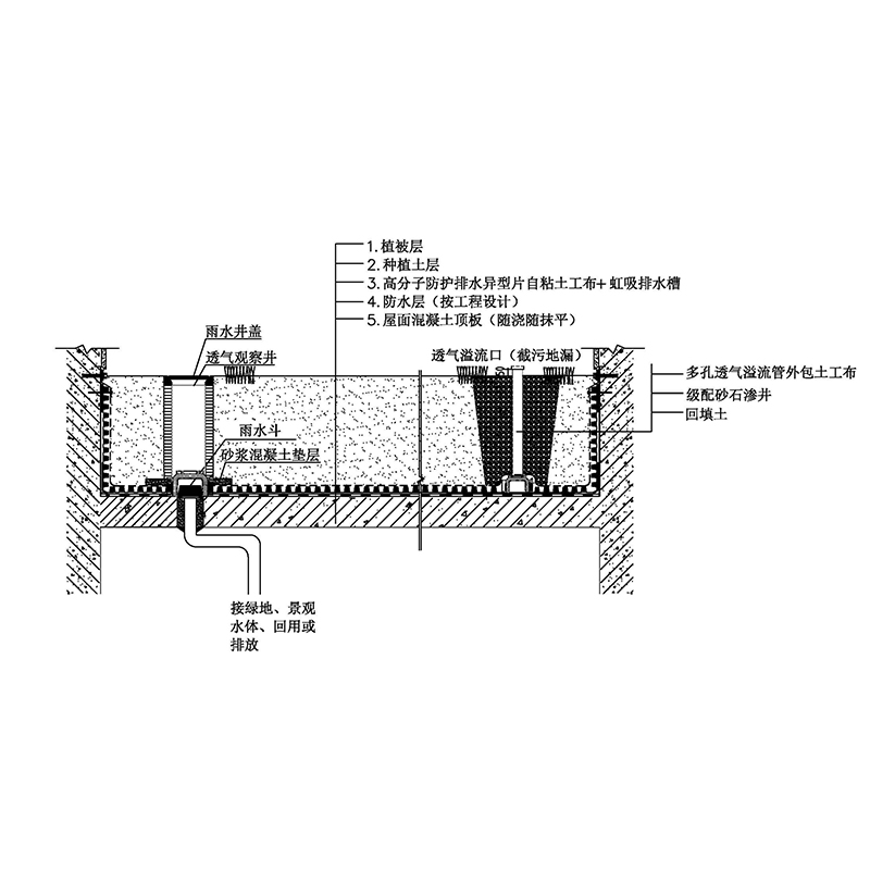 1-8虹吸式排水绿色屋顶 Model (1)
